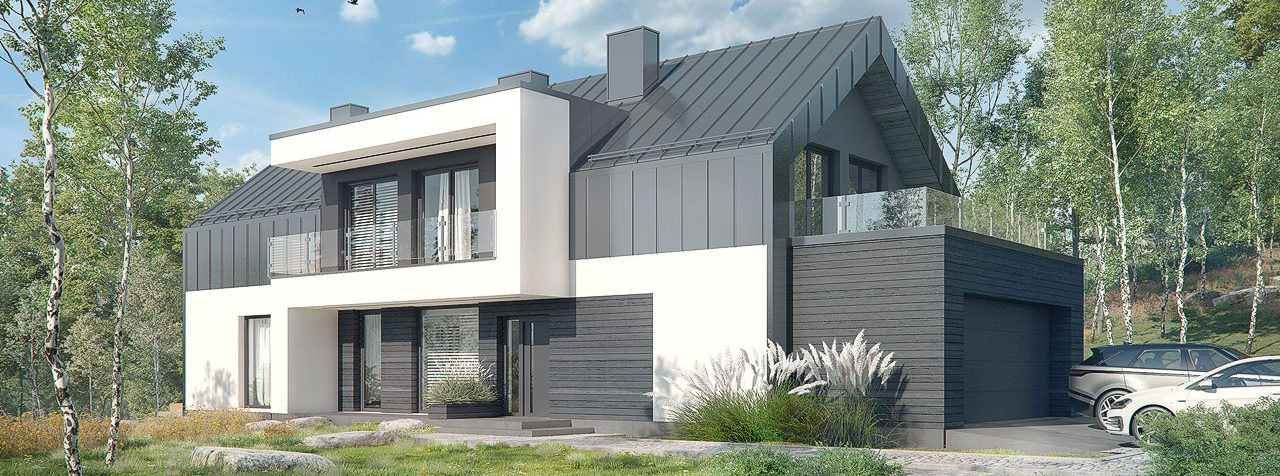Проект Дом в женьшене (Г2П)