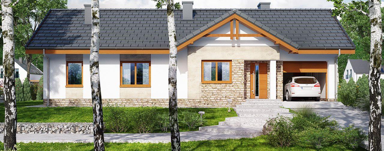 Проект Дом в неринах 4