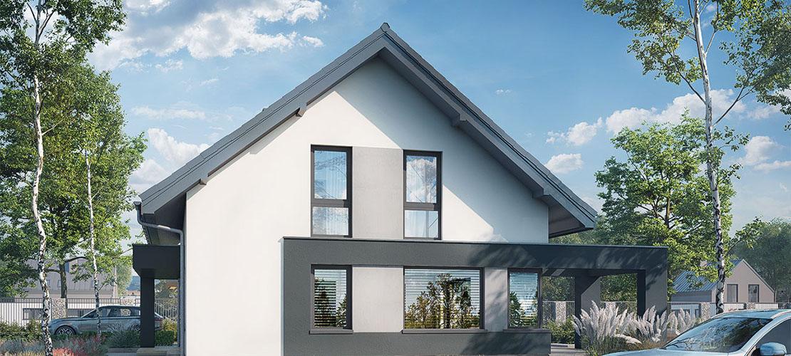 Проект Дом в сорго